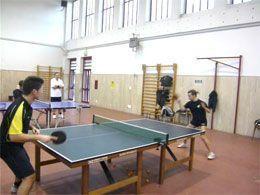 Tennis tavolo ariano due sconfitte e due vittorie - Stefano bosi tennis tavolo ...