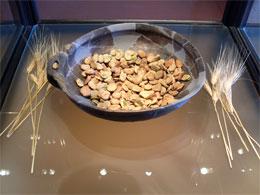 museo-cibo