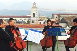 quartetto-violoncelli