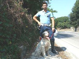 cane-ritrovato-0715