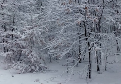 montevergine neve